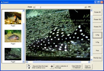 скриншот X360 Exif & Tiff Tag Viewer ActiveX OCX